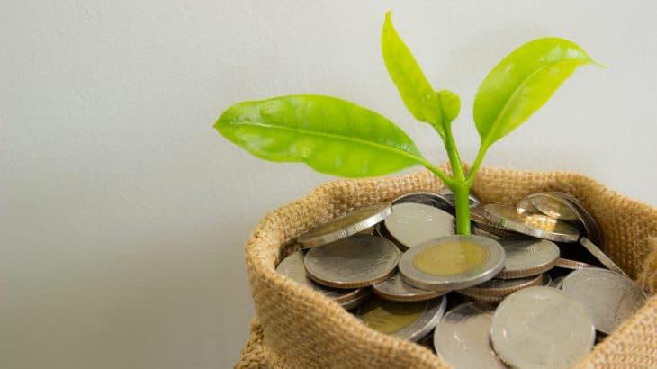資本金について正しく理解できている?初期設定や金額の考え方